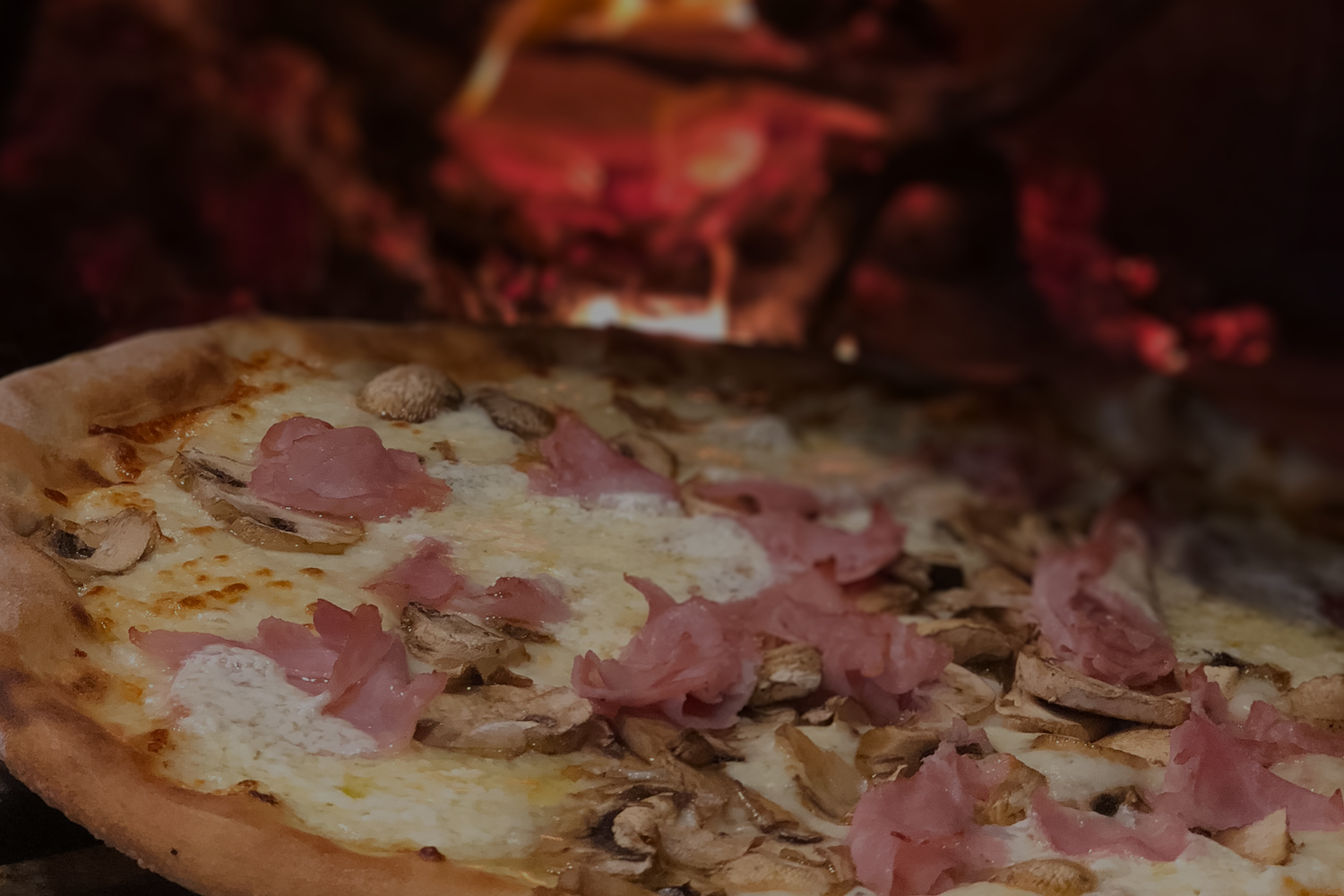 Siamo Pizza - Miami Springs' Wood Burning Brick Oven Pizzeria